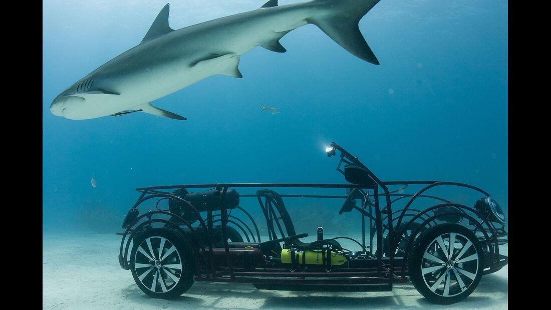 VW Beetle Cabrio Hai-Beobachtungskäfig