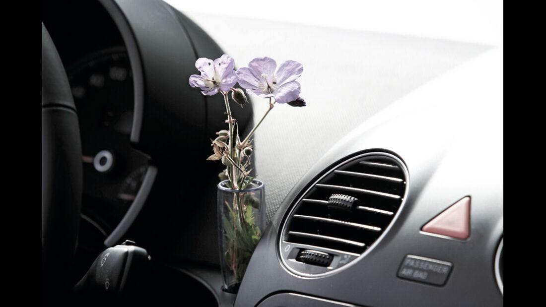 VW Beetle Cabrio Innenraum Vase