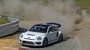 VW Beetle Rallycross, Frontansicht