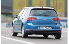 VW Golf TGI Blue Motion, Heckansicht