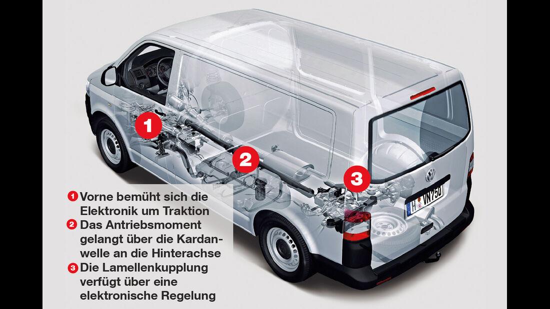 VW Multivan 2.0 TDI 4Motion, Igelbild, Grafik