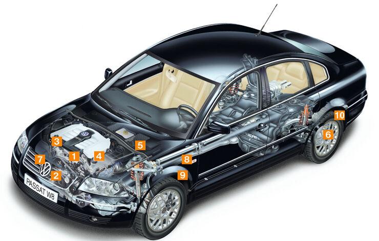 VW Passat W8, TYP 3B, Schwachstellen, Igelbild