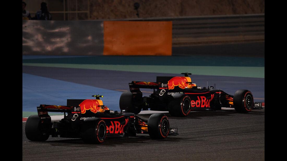 Verstappen - Ricciardo - Formel 1 - GP Bahrain - Sakhir - Training - Freitag - 14.4.2017