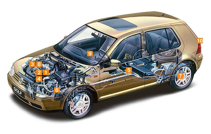 Volkswagen Golf 1.9 TDI, Schwachpunkte, Igelbild