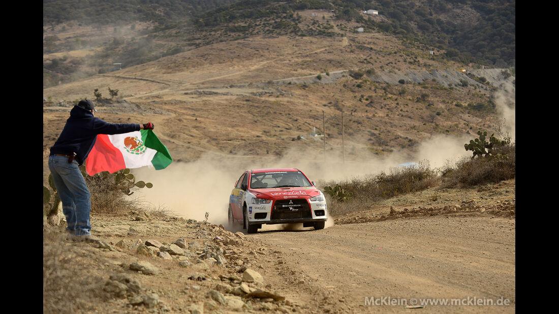 WRC Mexico 2013, Tag 2, Nicolas Fuchs