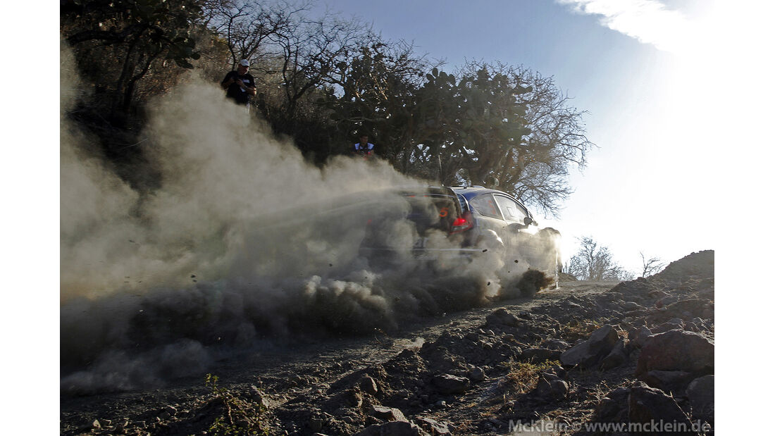 WRC Mexico 2013, Tag1, Evgeny Novikov