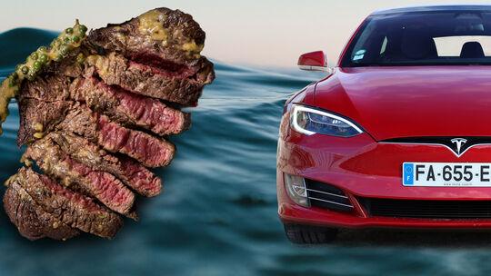 Wasserverbrauch Elektroauto Akku Vergleich