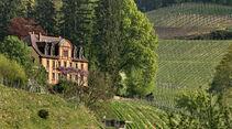 Weinberg, Schloss, Schwarzwald