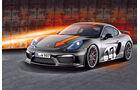 Wendland-Porsche Cayman GT4