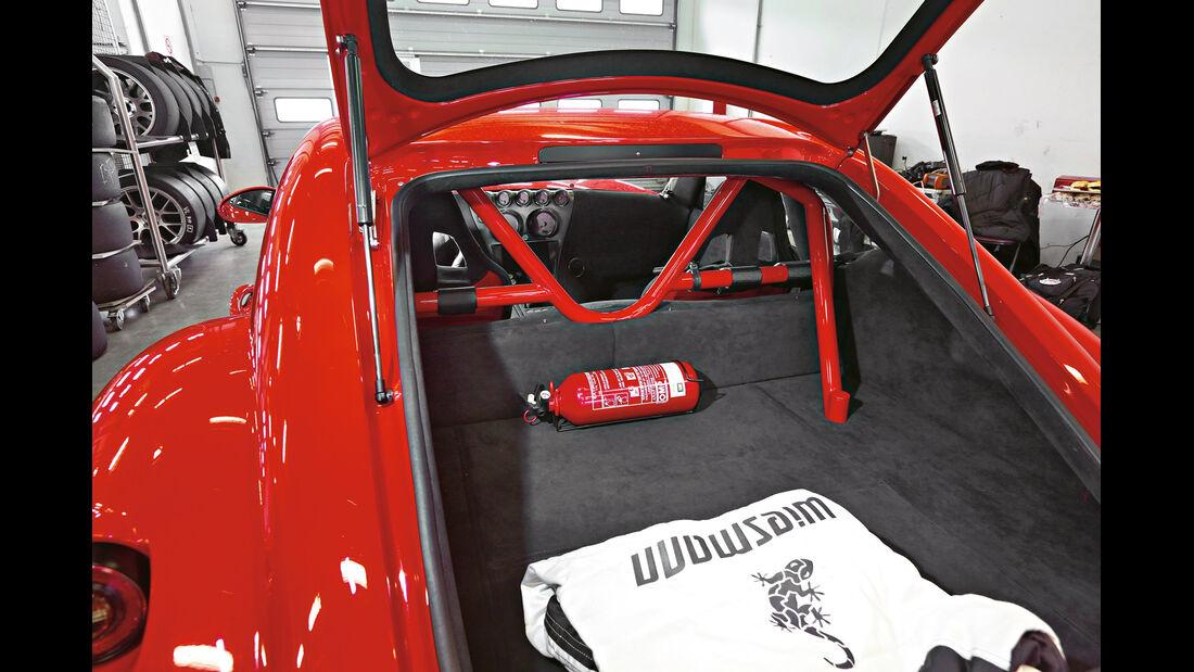 Wiesmann GT MF4-CS, Überrollkäfig, Kofferraum