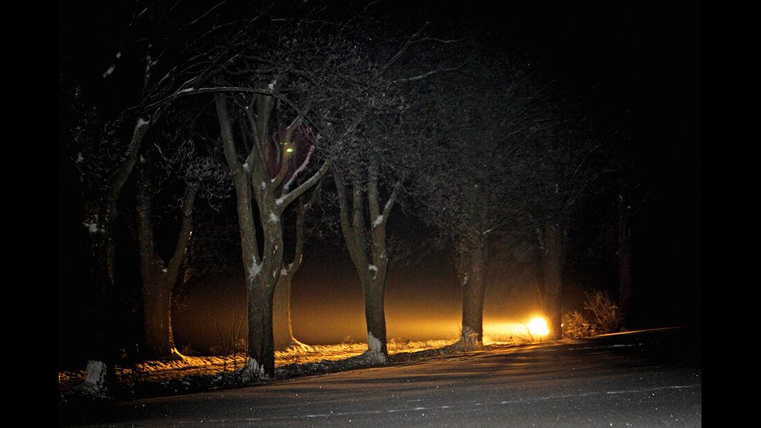 Winter Trail, Nachfahrt