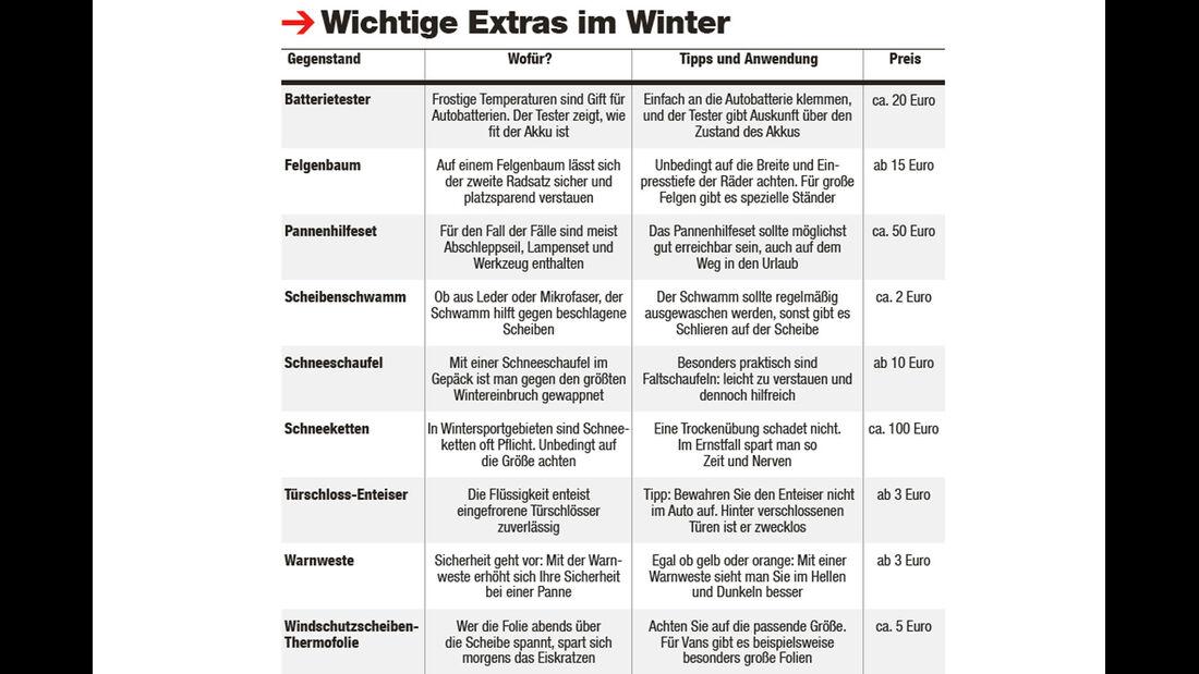 Winter - Wintercheck - Winterfest - Auto
