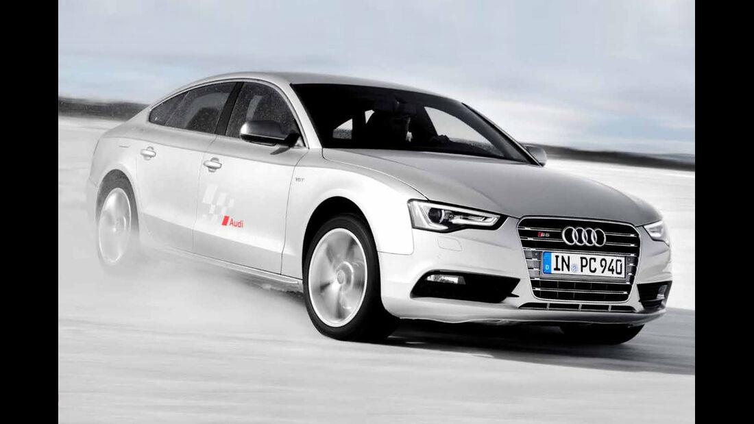 Wintertraining Audi
