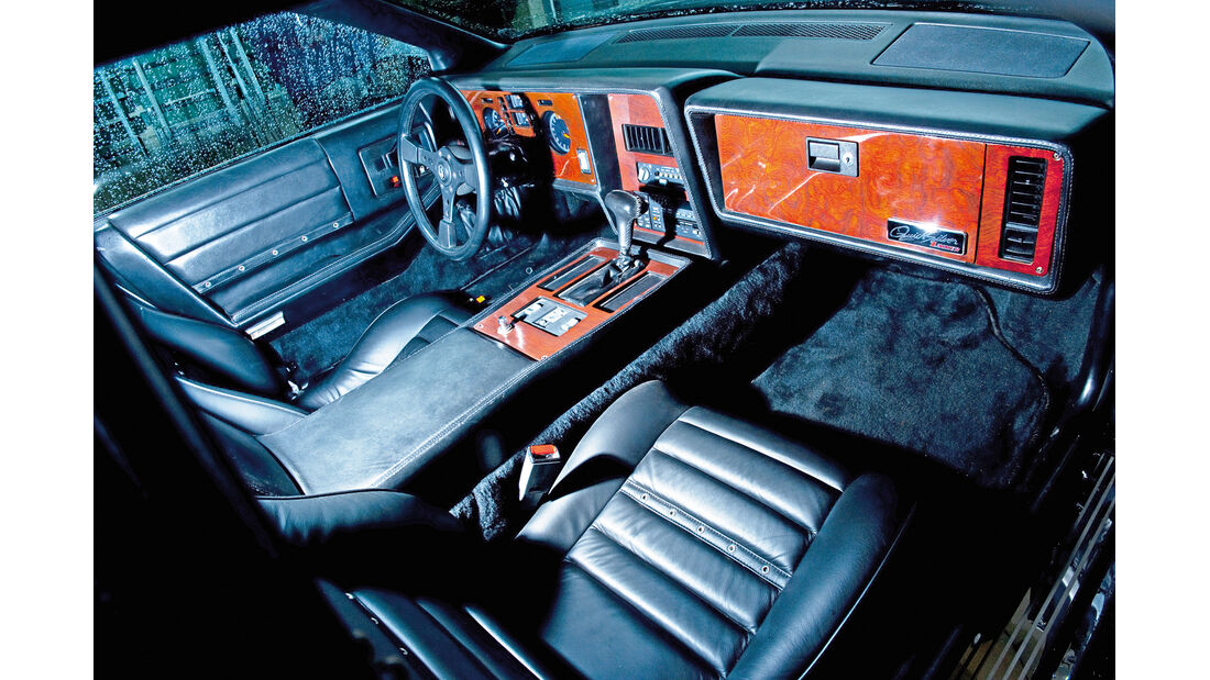 Zimmer Quicksilver, Sitze, Cockpit