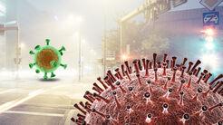 Zulassungen Corona Virus Neuzulassungen 2020