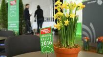 i-Mobility Rallye 2016, Siegerehrung
